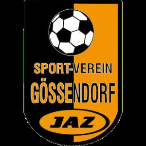SV Gössendorf MyTeamSport.at